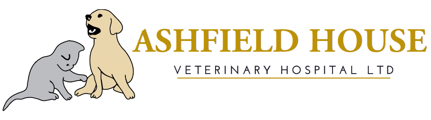 Ashfield House Veterinary Hospital Vets in Long Eaton, Nottingham and Derby