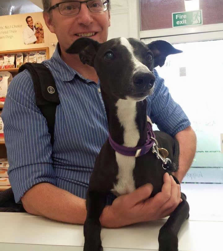 Dog Alfie and owner came to visit us at Long Eaton for his eye check!