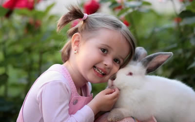 Are your rabbits vaccinations due in June or July?