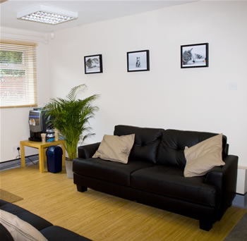 Bramcote Surgery Ashfield House Vets comfortable sofa and plant in waiting room