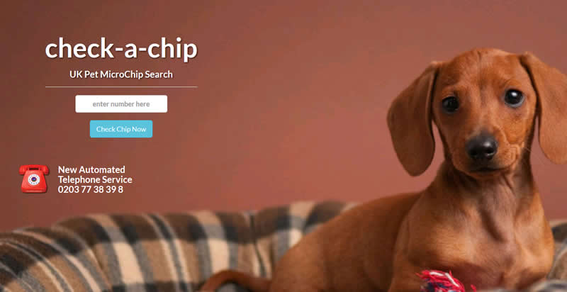 Daschund puppy and check a chip logo