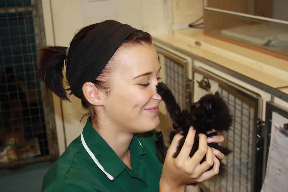 Nurse Sarah Pattinson at Ashfield House Vets with kitten