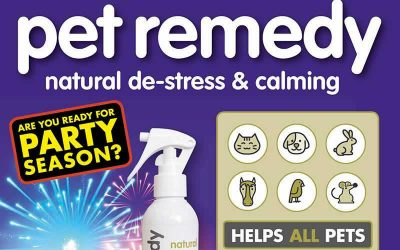 Pet Remedy to help your pet