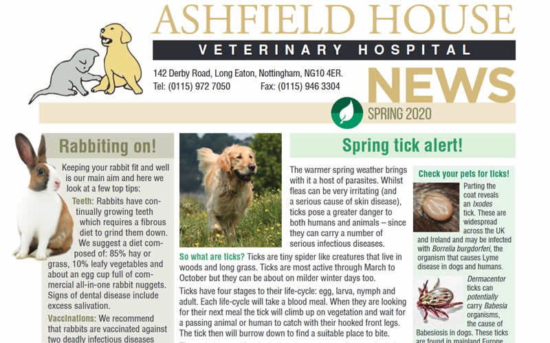 Spring 2020 news at Ashfield House Vets