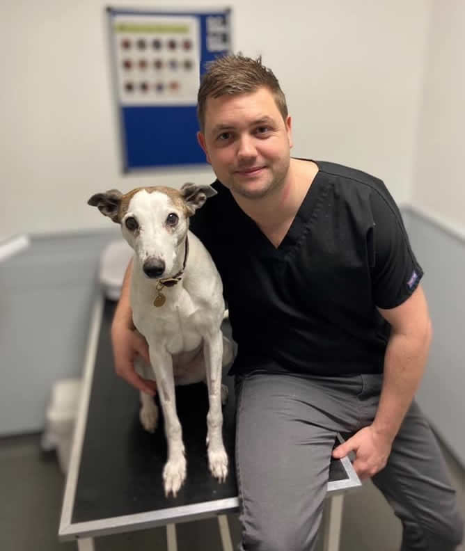 Ben Pugh and his dog as chosen as finalist for vet of the year 2020